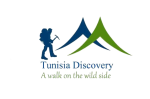 Tundiscovery